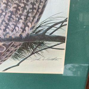 Vintage Wall Art - Long Eared Owl Print By John A Ruthven